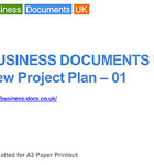 The New Project Plan provides a full project presentation deck.